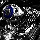 Easy Rider by Paul Holman