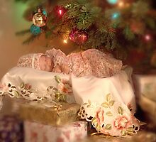 Hannah's first Christmas by Lyn Evans