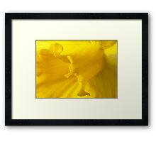A Cup Filled With Sunshine Framed Print