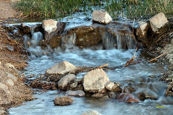 Babbling Brook by George Lenz