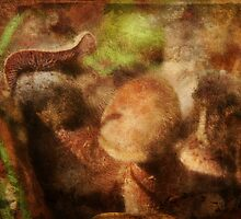 Abstract Mushrooms by Ginger  Barritt