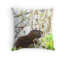 This a'int no Groundhog Day Throw Pillow