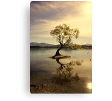 A Tree Alone Canvas Print