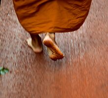 A Monk's Journey by Duane Bigsby