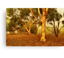 """Dawn On The Riverflats"" Canvas Print"