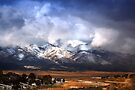 Ward Mountain by Arla M. Ruggles