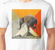 Balance of the Pyramids Unisex T-Shirt