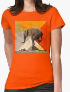 Balance of the Pyramids Womens Fitted T-Shirt