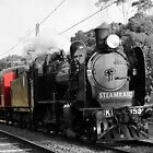 Steamrail Victoria Williamstown 2 by BeyondClarity