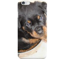 Female Rottweiler Puppy Curled In A Food Bowl iPhone Case/Skin
