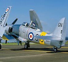 Hawker Sea Fury T.20 WG655/910-GN by Colin Smedley
