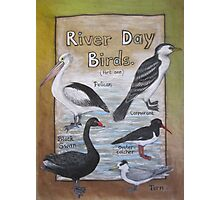 River Day Birds  Photographic Print