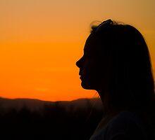 Sunset silhouette by Birgit Van den Broeck