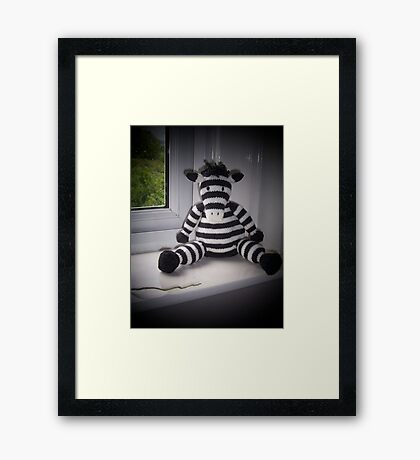 Knitted Zebra Framed Print