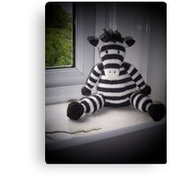 Knitted Zebra Canvas Print