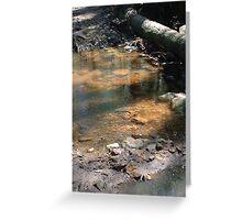 Aussie bush creek Greeting Card