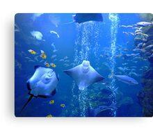 Underwater Odyssey Canvas Print
