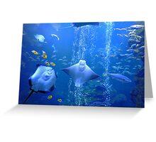 Underwater Odyssey Greeting Card