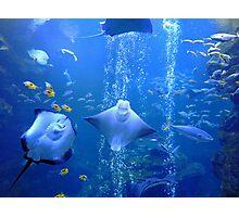 Underwater Odyssey Photographic Print