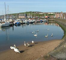 Whitehaven Harbour, Cumbria, UK by Jennifer Mosher