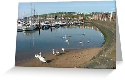 Buy e greeting cards uk - Whitehaven Harbour, Cumbria, UK Greeting Cards & Postcards