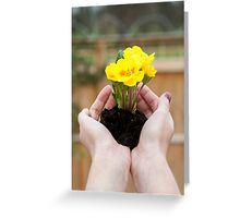 Hands holding yellow flowers.  Greeting Card