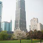 Shanghai Park View by sallyrose1