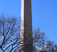 Washington Monument by Cyn Piromalli