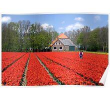The Tulip Farmer Poster