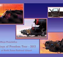 Wings of Freedom Tour 2013 by aprilann
