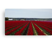 "RED for ""Joy"" - Jump'n for Joy in the Tulip Patch! Canvas Print"