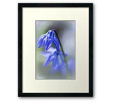 Blues.... Framed Print