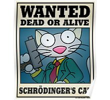 Schrodinger's Cat - Other Poster
