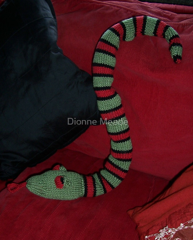 Knitted Snake by Dionne Meade