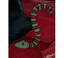 Knitted Snake Photographic Print