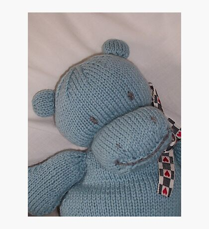 Knitted Hippo Photographic Print