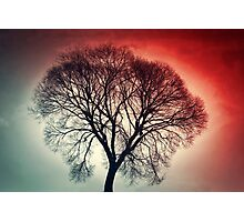 Blood Red Skies Photographic Print