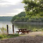 Picnic at the Lake by Paul Sturdivant