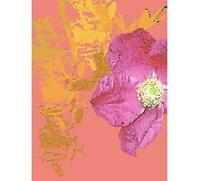 coral vintage flower Photographic Print