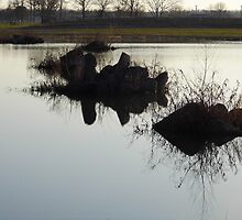 Cement Reflections by WildestArt