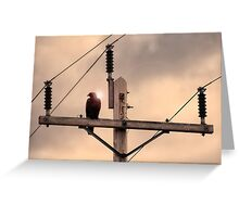 Electric Eagle Greeting Card