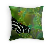 A Zebra Longwing Butterfly  Throw Pillow