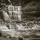 Liffey Falls (Tas) by John Conway