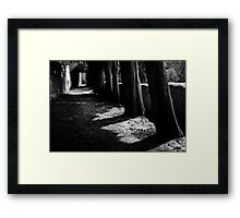 in queue Framed Print