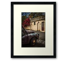 Aged Beauty, Daylesford, Victoria Framed Print