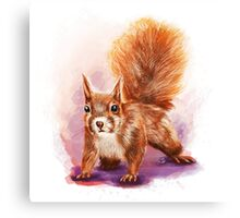 Squirrel  - Digital Painting by Tom Lopez Canvas Print