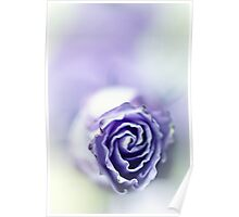 Purple breeze....(soft 2) Poster