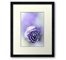 Purple breeze....(soft 1) Framed Print