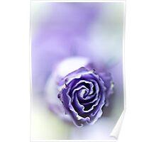 Purple breeze....(soft 1) Poster