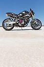 Ducati Monster on the salt 2 by Frank Kletschkus